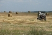 Аграрний штаб вирішив прискорити розпаювання землі ДП «Шубківське»