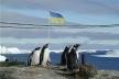 Рівне – Антарктида: рівненські полярники поділилися враженнями від екстремальних експедицій (Фото)