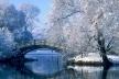 Sinoptik: Погода в Рівному та Рівненській області на середу, 24 січня