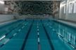 У Рівному стартував відкритий Кубок області з плавання «Ред шарк» (Відео)