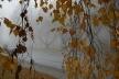 Погода на Рівненщині у вівторок, 23 жовтня