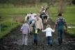 35 мільйонів гривень одержала Рівненщина на розвиток сільського господарства