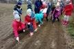 Корецькі школярі долучилися до акції «Посади своє дерево»