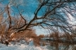 Sinoptik: Погода в Рівному та Рівненській області на середу, 23 січня