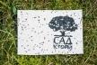 Волонтери «Саду історій» збирають кошти на висадку дерев у Рівному