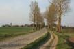 Як мешканців Певжі на Млинівщині «припнули» в селі