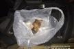 У Володимирецькому районі поліцейські вилучили вісім кілограмів бурштину