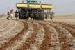 На Рівненщині зніматимуть телесеріал про фермерів