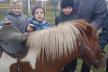 В Ясининицькому навчально-реабілітаційному центрі малеча каталася на конях