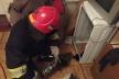 Маленьке цуценя з пральної машини дістали рятувальники міста Вараш (фото)