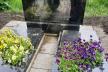 Здолбунівські підлітки познущалися з могил (ФОТО)
