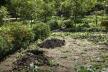 У Рівному знову конфлікт через земельну ділянку (ВІДЕО)