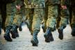 У Рівненській області до війська призвано 190 чоловік