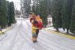 Млинівські рятувальники витягли пса з озера