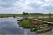 У Рівненській області розпочалися роботи щодо створення національного природного парку