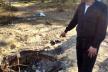 У Клесові чоловік викинув вкрадені цвяхи й бензопилу, а курей закопав у лісі