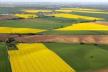Махінації з землями дослідних господарств на Рівненщині набирають обертів
