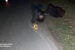 ДБР повідомило про підозру поліцейському, який збив пішохода та втік з місця ДТП