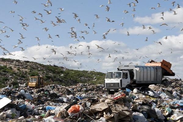 Асоціація міст України запропонувала, як врятувати країну від стихійних сміттєзвалищ