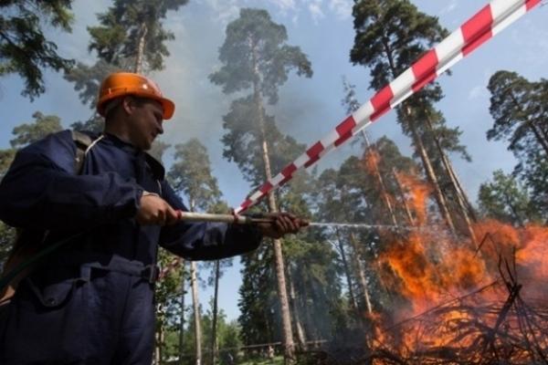 В Україні очікується суха та спекотна погода