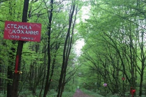 «Тунелю кохання», що на Рівненщині, з'явилась альтернатива