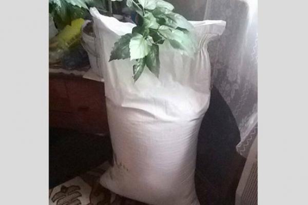 На Дубенщині горе-крадії збули вкрадений мішок цукру за 50 гривень