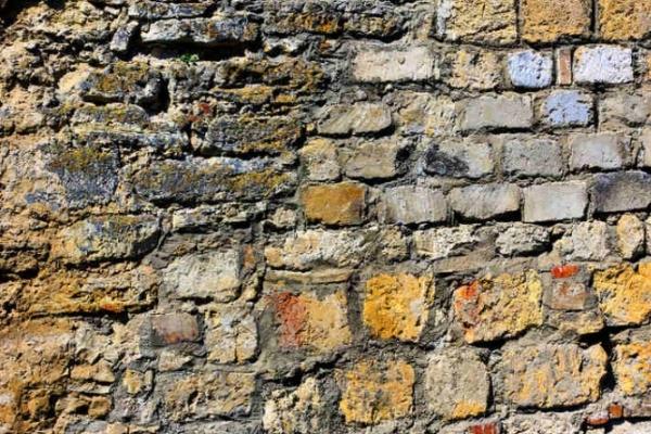 В Острозі археологи докопалися до княжої кам'яниці