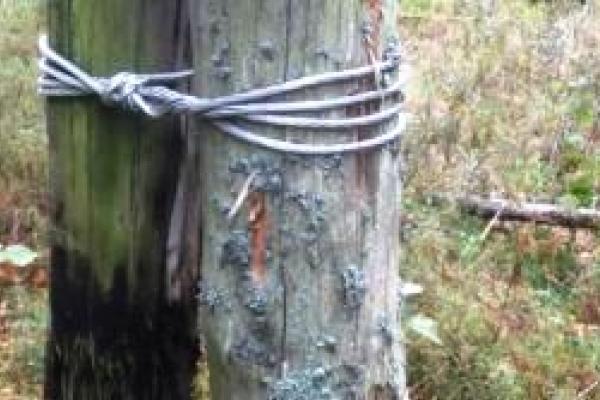 Озерці та Собіщиці хочуть нормального електропостачання
