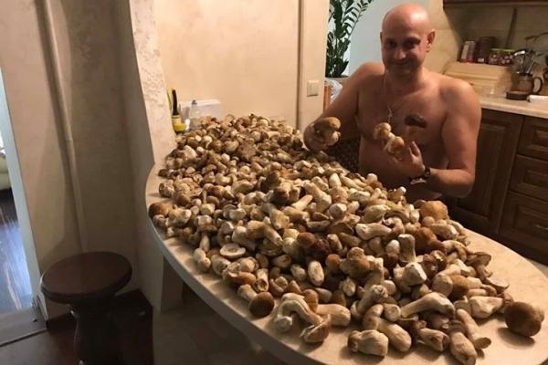 У соцмережах грибів більше, ніж у лісі (Фото)