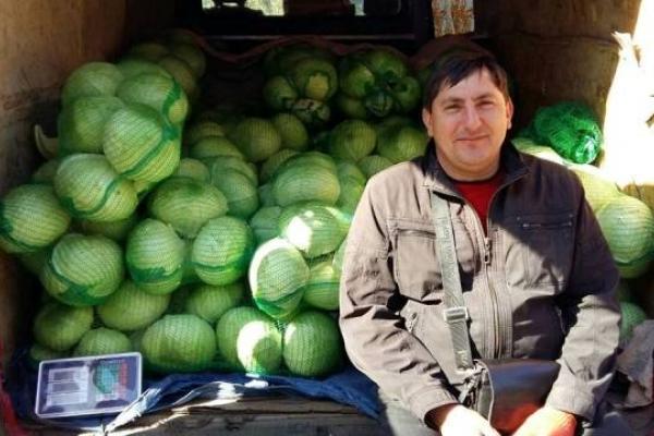 110 тонн овочів реалізували на рівненському ярмарку (Фото)