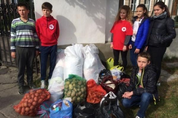 В Острозі допомогу для літніх людей збирали школярі