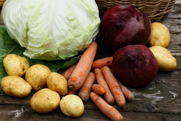 Рівнянам пропонують запастися на зиму капустою, морквою та іншими продуктами