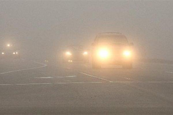 Патрульна поліція Рівного попереджає водіїв про сильний туман