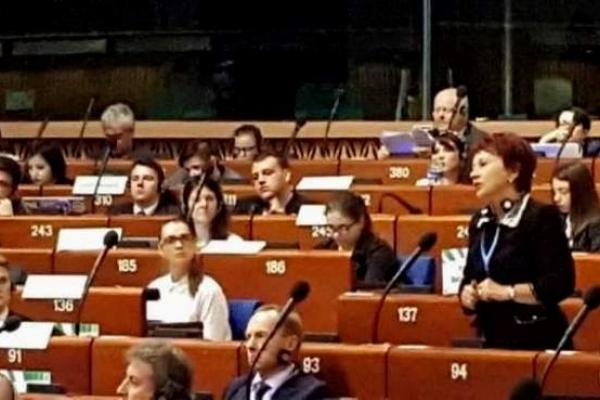 Заступниця голови Рівненської ОДА Світлана Богатирчук-Кривко у Страсбурзі відстоює інтереси України