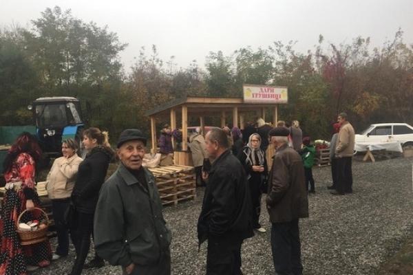 Поблизу траси Київ-Чоп у Грушвиці відкрили ринок сільськогосподарської продукції (Фото)
