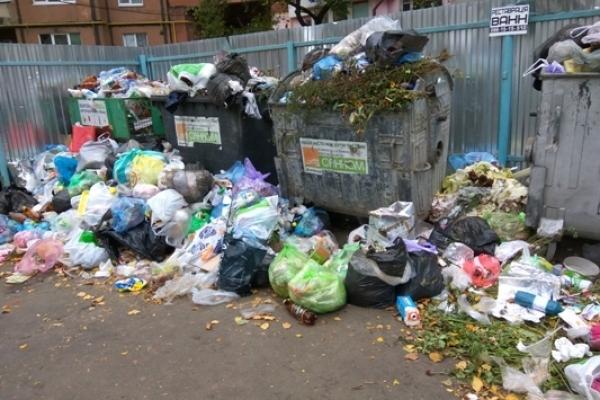 Колапс, як у Львові? Рівняни потерпають від накопичення сміття