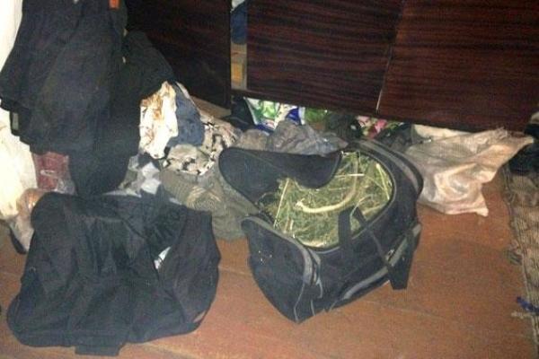 На Дубровиччині коноплі носять сумками (Фото)