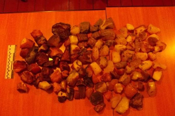 Видобуток бурштину не припиняється. На Рівненщині поліцейські виявили понад 9 кг сонячного каміння (Фото)