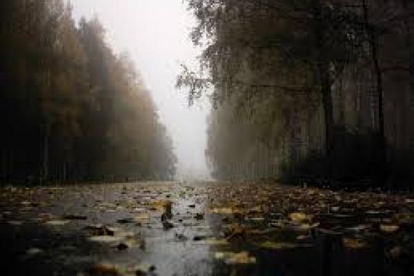 Sinoptik: Погода в Рівному та Рівненській області на п'ятницю, 3 листопада