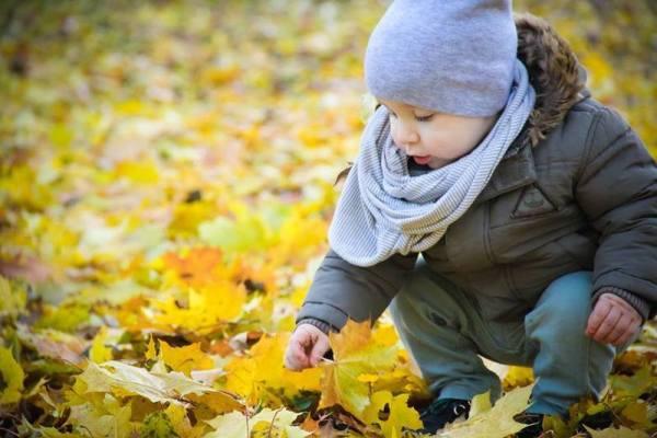 Sinoptik: Погода в Рівному та Рівненській області на середу, 15 листопада