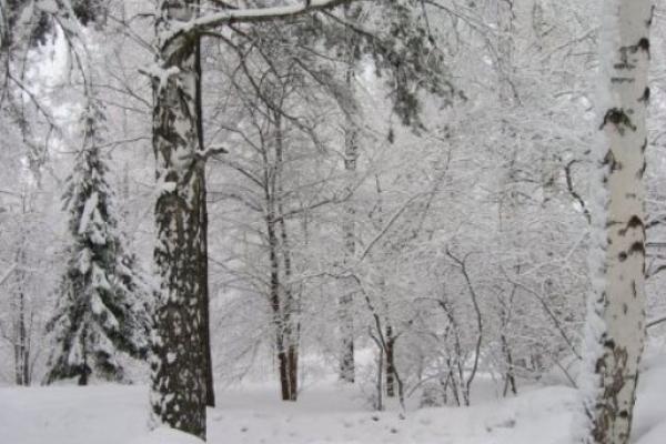 Sinoptik: Погода в Рівному та Рівненській області на вівторок, 21 листопада