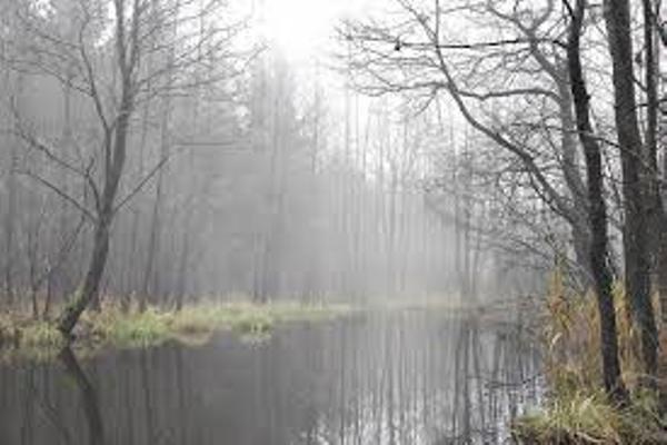 Sinoptik: Погода в Рівному та Рівненській області на вихідні, 25 і 26 листопада