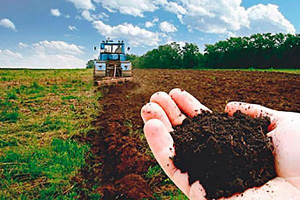Селяни заробили на оренді паїв близько 400 млн. грн