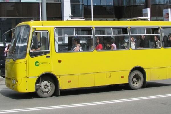 Водії рівненських маршруток залишаться безкарними