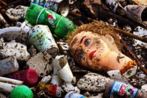 Купи сміття зі Львова знову скинули біля Рівного (Відео)