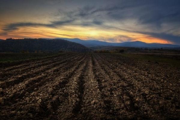 На Рівненщині ОТГ почнуть отримувати землі