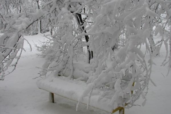 Погода У Рівному та на Рівненщині на 5 лютого