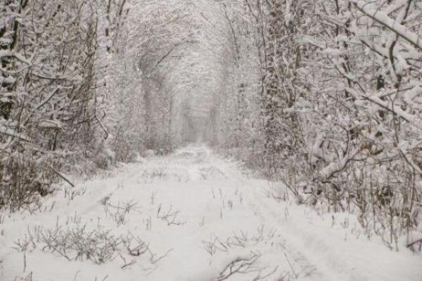 Sinoptik: Погода в Рівному та Рівненській області на четвер, 8 лютого