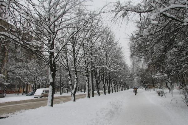 Погода в Рівному та на Рівненщині на понеділок, 12 лютого