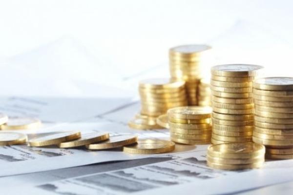 Майже 40 млн грн сплатили жителі Рівненщини до місцевих бюджетів